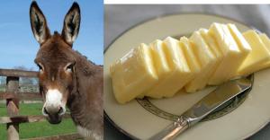 burro mantequilla italiano español parecidos diferentes