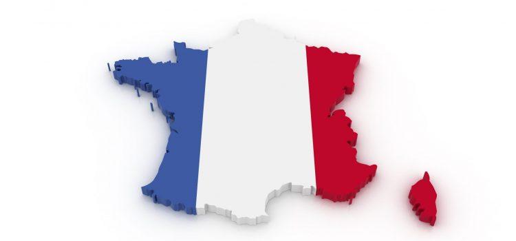 Imparare il francese con Grégoire Delacourt